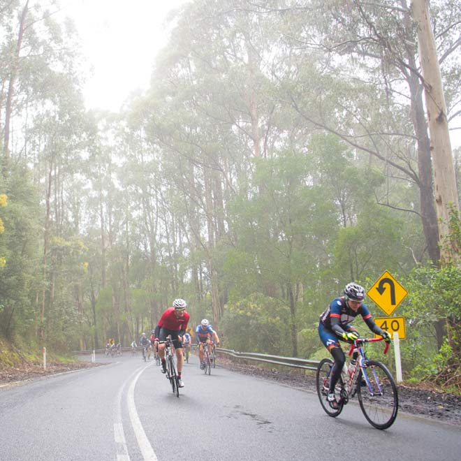 Amy's Gran Fondo,  bunch climb to forrest misty and wet roads